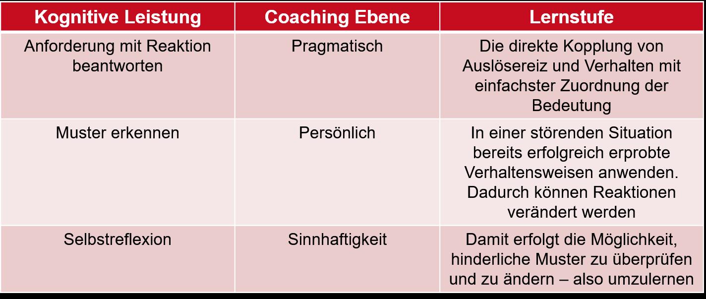 Coaching Lernebenen