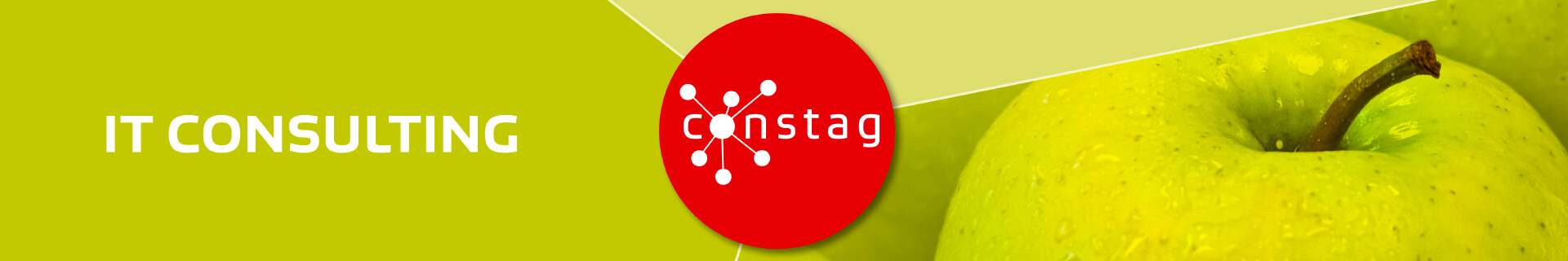 Constag Produkte IT Consulting Neutral