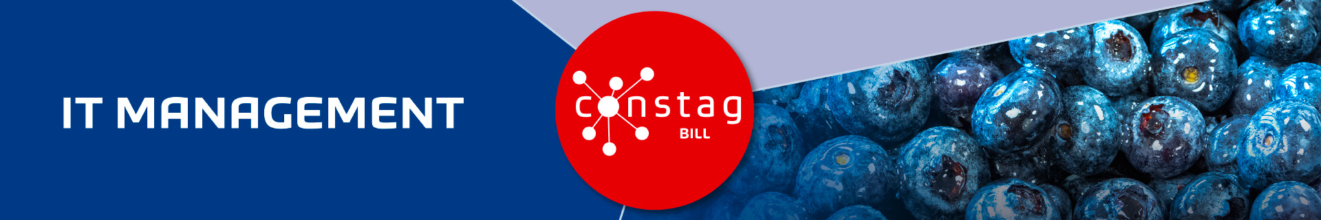 Constag Produkte IT-Management BILL