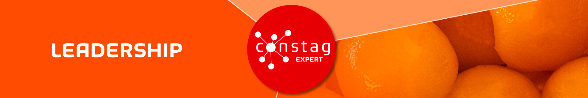 Constag Produkte Leadership EXPERT