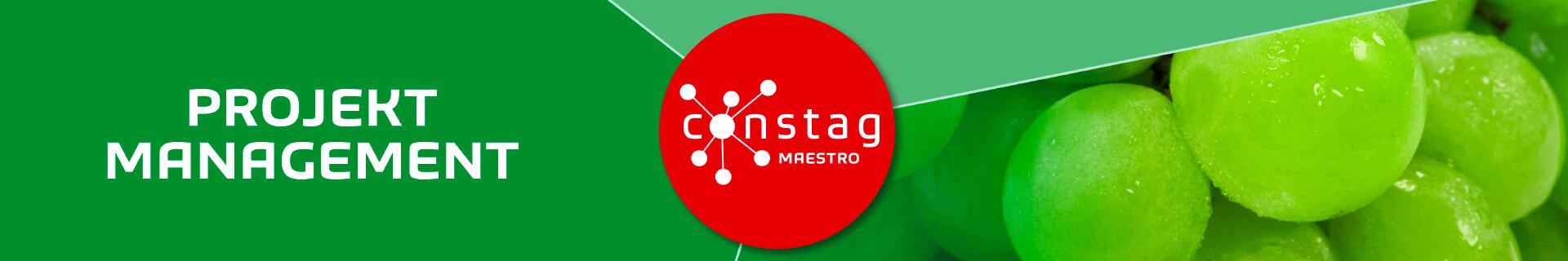 Constag Produkte Projekt-Management MAESTRO