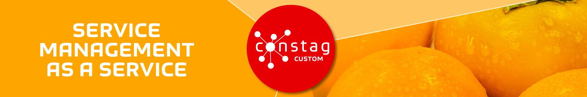 Constag Produkte Service Management CUSTOM