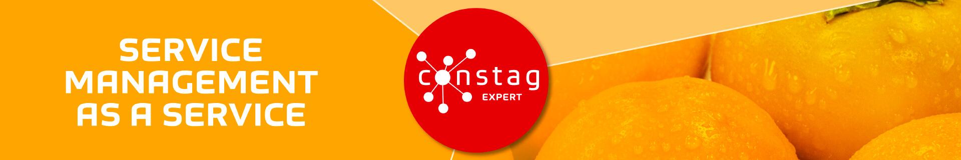 Constag Produkte Service Management EXPERT