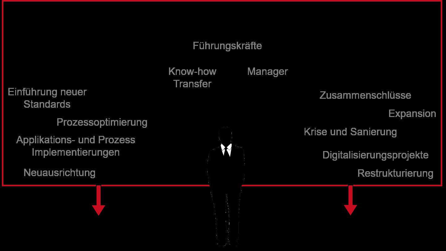 Einsatzgebiete Interim Management